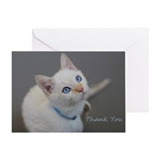 Blue Eyed Kitten Thank You Greeting Card