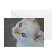 Blue Eyed Kitten Thank You Greeting Card