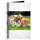 Funny Feline Journal