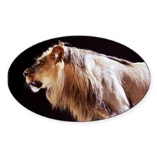 Lion Side Decal