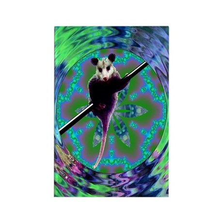 Possum Kaleidoscope Rectangle Magnet (100 pack)