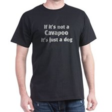 Cavapoo: If it's not T-Shirt
