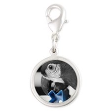 havocblue_ornament Silver Round Charm