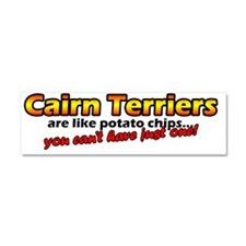 cairn_potatochips Car Magnet 10 x 3