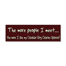 cavalier_morepeople Car Magnet 10 x 3