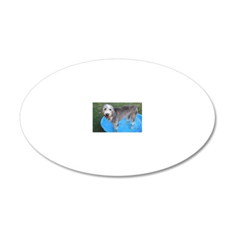 rooinpool 20x12 Oval Wall Decal