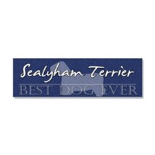 sealyham_bestdogever Car Magnet 10 x 3
