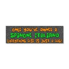 spinone_everythingelse Car Magnet 10 x 3