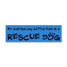 australiancattle_rescuedog Car Magnet 10 x 3