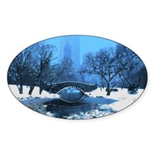Central Park New York Winter Decal