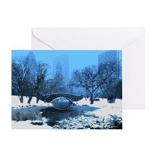 Central Park New York Winter Greeting Card