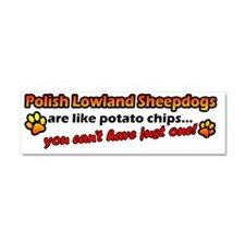 polish_potatochips Car Magnet 10 x 3