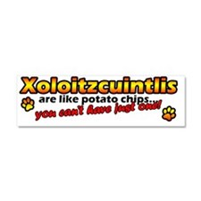 xolo_bumper_potato Car Magnet 10 x 3