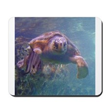 sea turtle 3 Mousepad