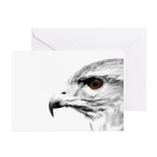Raptor Greeting Cards (Pk of 10)