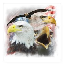 "Eagles Square Car Magnet 3"" x 3"""