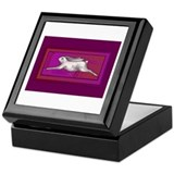 Caballo Keepsake Box