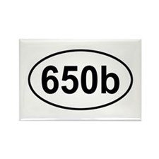 605b Rectangle Magnet