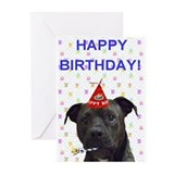 Pit Bull Birthday Cards (Pk of 10)