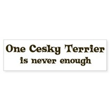 One Cesky Terrier Bumper Bumper Sticker