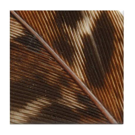 Pheasant Feather Tile Coaster 3