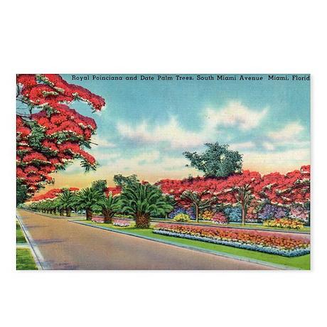South Miami Avenue Miami Florida Postcards