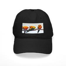 Sun Conure Baseball Hat