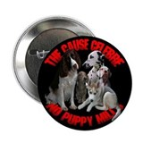 NO PUPPY MILLS Button