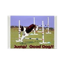 Jump! Good Dog! Rectangle Magnet