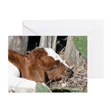 Boer Kid Napping Greeting Cards (Pk of 10)