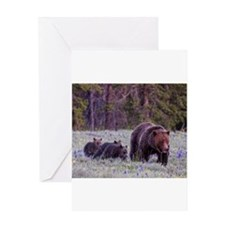 Grizzly Bear 399 Greeting Card