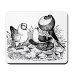 Pigeon Trio Mousepad