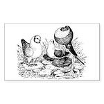 Pigeon Trio Rectangle Sticker