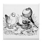 Pigeon Trio Tile Coaster
