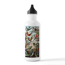 Vintage Hummingbird Water Bottle