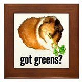 Got Greens Framed Tile