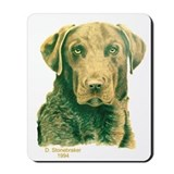 Dead Grass Chesapeake Mousepad