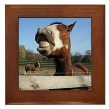 Laughing Horse Framed Tile