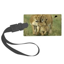 African Lions Luggage Tag