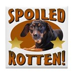 Spoiled Rotten Dachshund Tile Coaster