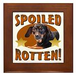 Spoiled Rotten Dachshund Framed Tile