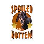 Spoiled Rotten Dachshund Mini Poster Print