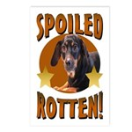 Spoiled Rotten Dachshund Postcards (Package of 8)