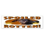 Spoiled Rotten Dachshund Bumper Sticker