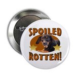 Spoiled Rotten Dachshund Button