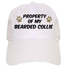 Bearded Collie: Property of Baseball Cap