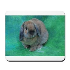 Mousepad with Floppy Rabbit