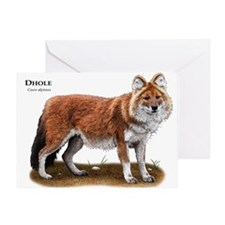 Dhole Greeting Card