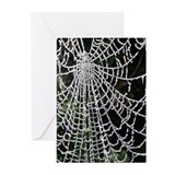 Ice-Encrusted Web Greeting Cards (Pk of 10)