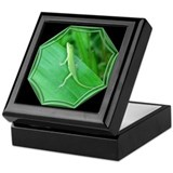 Green Lizard Black Keepsake Box